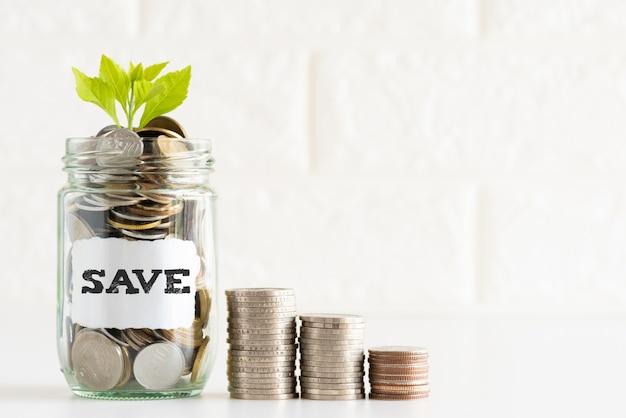 Abstrakcjonistycznego pieniądze oszczędzania mały młody drzewo z szklanymi słój monetami