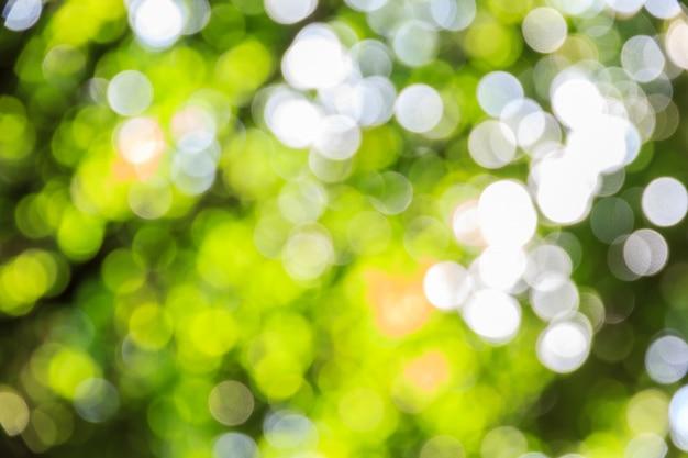 Abstrakcjonistyczny bokeh i zamazany zielony natury tło