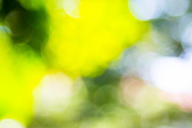 Abstrakcjonistyczny naturalny zielony bokeh z ostrości tła