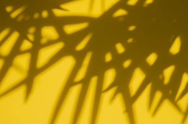 Abstrakcjonistyczny tło z palmowym liściem ocienia na kolorze żółtym
