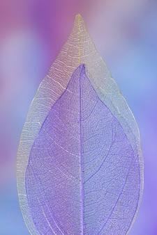 Abstrakcjonistyczny wibrujący barwiony jesień liść