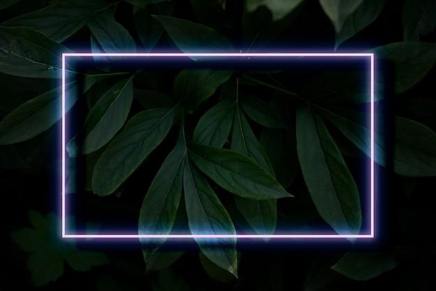 Abstrakcyjna ramka w kolorze neonu na roślinie o głębokim cieniu pozostawia kreatywną koncepcję tropikalną