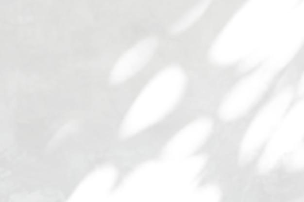 Abstrakcyjny cień liści na białym efekcie nakładki na ścianę do prezentacji zdjęć makiety produktu ściennego