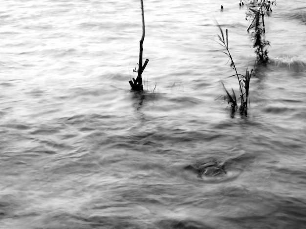 Abstrakcyjny obraz szybkiego ruchu strumienia w odcieniach czarno-białych