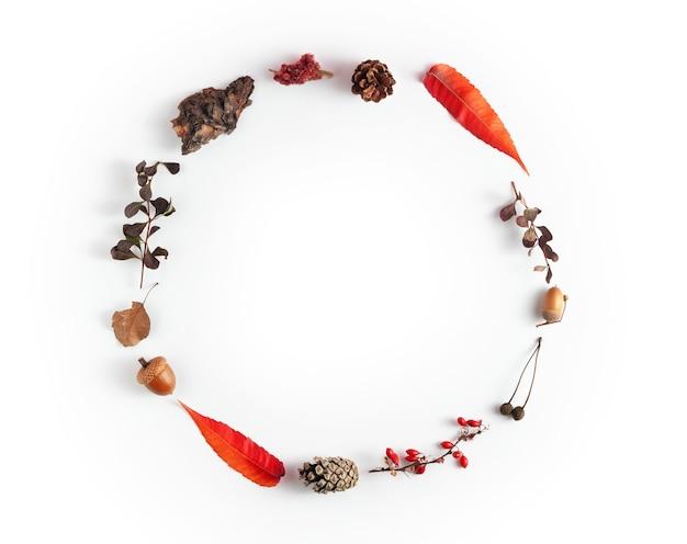 Abstrakcyjny układ jesień z szyszek, żołędzi, liści i gałęzi ułożonych w kółko na białym tle. kreatywna wizja jesieni w minimalistycznym stylu.