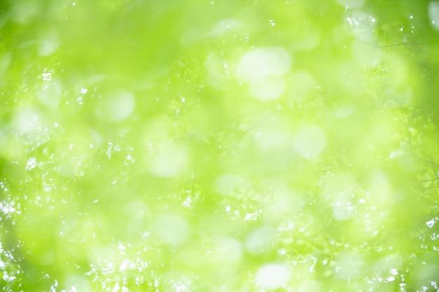 Abstrakt zamazywał z ostrości i zamazanego zielonego liścia tła
