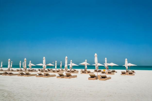 Abu dabi. hotel oasis of the park hyatt abu dhabi nad zatoką perską w abu zabi. plaża przyjazna dla środowiska.