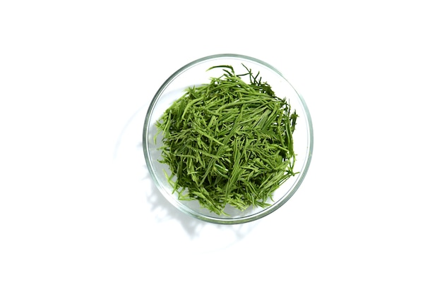 Acacia pennata lub climbing wattle w szklanej misce