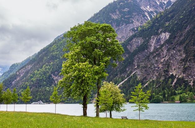 Achensee (jezioro achen) letni krajobraz z zieloną łąką i drewnianą ławką na brzegu (austria)