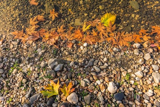 Adala kanion jesienią z liśćmi spadek na drzewach odzwierciedlających w pięknym stawie. izmir provnce, turcja