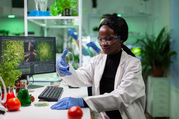 Afroamerykański naukowiec trzymający szalkę petriego z próbką zielonego liścia