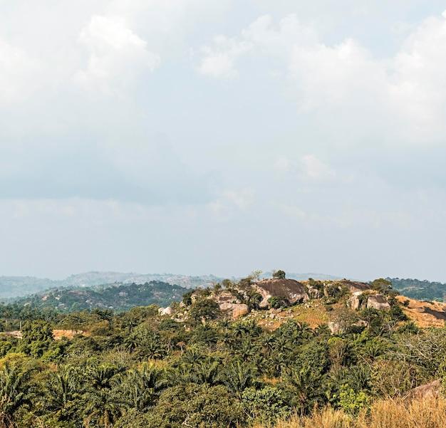 Afrykańska przyroda z niebem i górami