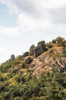 Afrykański krajobraz przyrody z górami