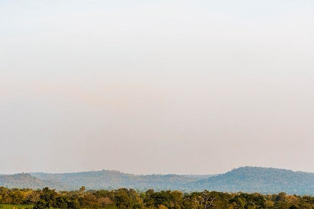 Afrykański krajobraz przyrody z niebem o zmierzchu