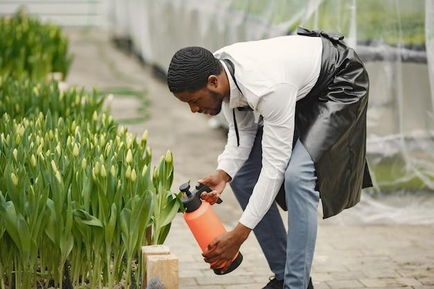 Afrykański ogrodnik. ogrodnik z konewką. kwietniki.