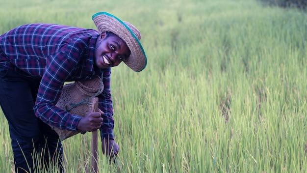 Afrykański rolnik szczęśliwie pracuje na swoim gospodarstwie, trzymając narzędzia rolnicze. koncepcja rolnictwa lub uprawy