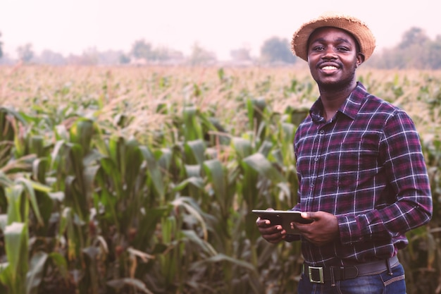 Afrykański rolnik z kapeluszem stoi na polu plantacji kukurydzy