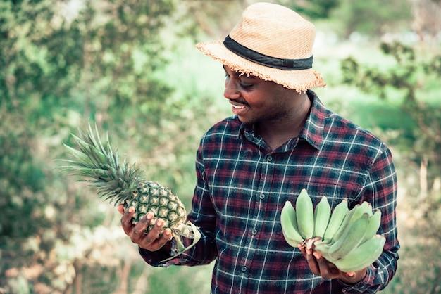 Afrykański średniorolny mężczyzna mienia ananas i banan przy organicznie gospodarstwem rolnym z uśmiechem i szczęśliwy rolnictwa lub kultywaci pojęcie