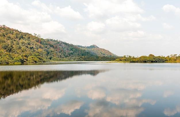Afrykański widok przyrody z drzewami i jeziorem