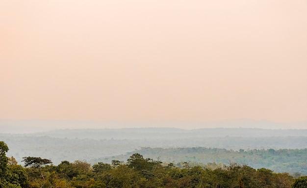 Afrykański widok przyrody z drzewami