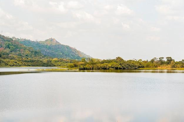 Afrykański widok przyrody z roślinnością i jeziorem