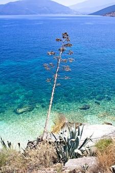 Agia efimia plaża, kefalonia