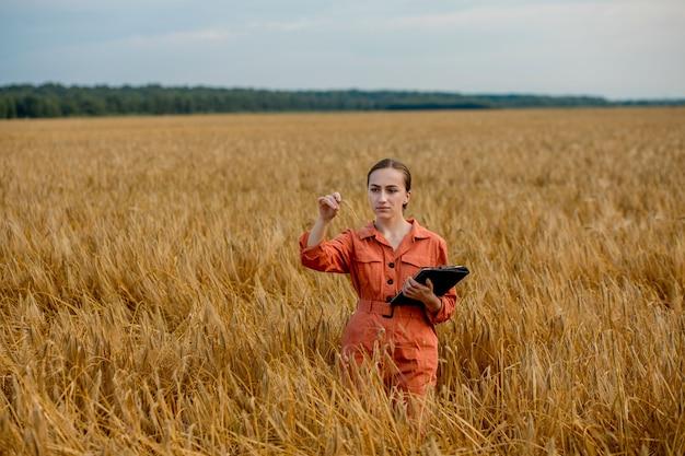 Agronom gospodarstwa probówki z ziarnami jęczmienia w polu, zbliżenie. hodowla zbóż, z wyjątkiem testowania pszenicy