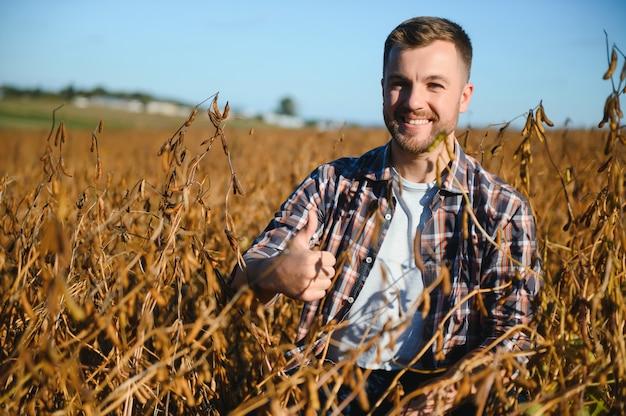 Agronom kontrolujący uprawy soi na polu. koncepcja produkcji rolnictwa. młody agronom bada uprawę soi na polu w lecie. rolnik na polu soi
