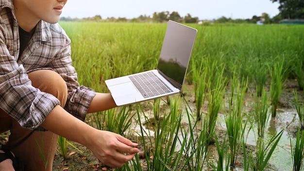 Agronom używa laptop w polu rolnictwa.