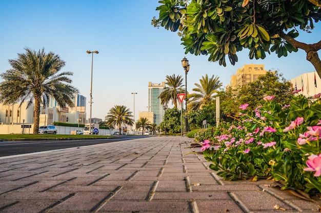 Ajman. rano słoneczna zielona ulica w emiracie ajman.