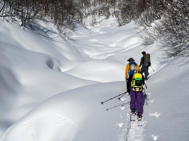 Aktywni mężczyźni chodzą na nartach lub deskach splitboardowych po śniegu. aktywność sportowa w skituringu