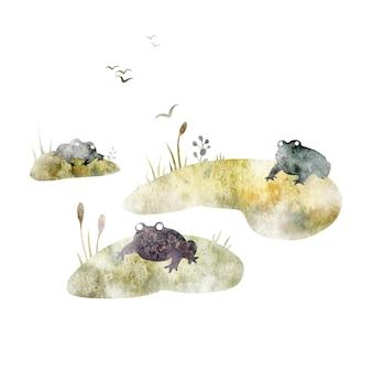 Akwarela bagno ilustracja kwiatowy backwater uderza trzciny żaby na białym tle