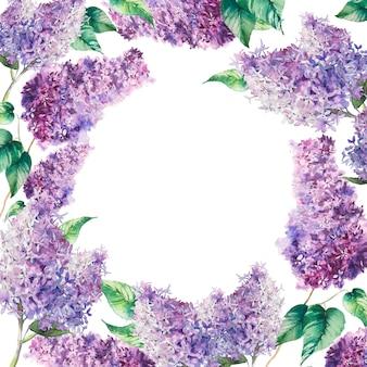 Akwarela bez gałęzi ramki. ręcznie rysowane botaniczny ilustracja kwiat wiosny. naturalni kwiaty na białym tle