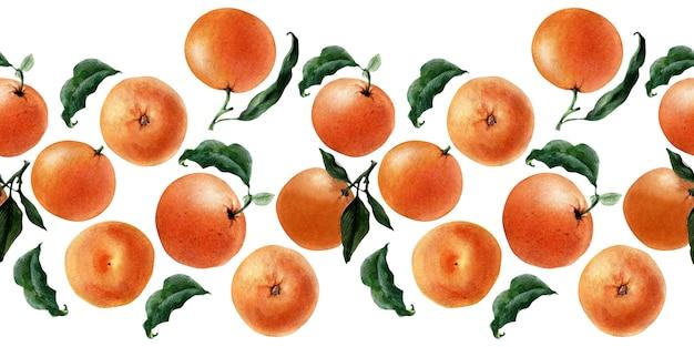 Akwarela bezszwowe granica owoców, gałązek i plastry mandarynki