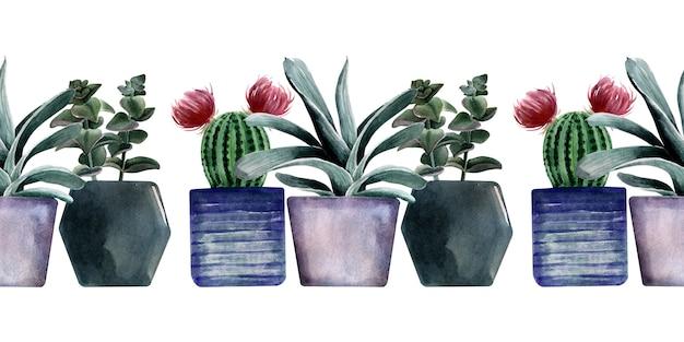 Akwarela bezszwowe granica z różnymi rodzajami kaktusów w wielobarwnych doniczkach