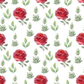 Akwarela bezszwowe wzór szkarłatna róża uroczysty