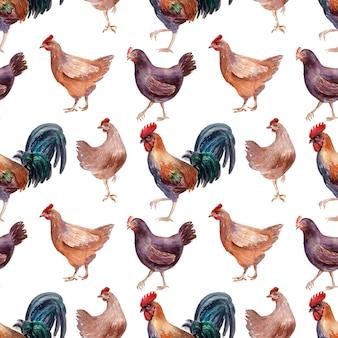 Akwarela bezszwowe wzór z drobiu, kurczaków, koguty i jaj