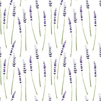 Akwarela bezszwowe wzór z roślinami lawendy