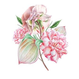 Akwarela bukiet z kwiatami. róża. anthurium. ilustracja. wyciągnąć rękę.
