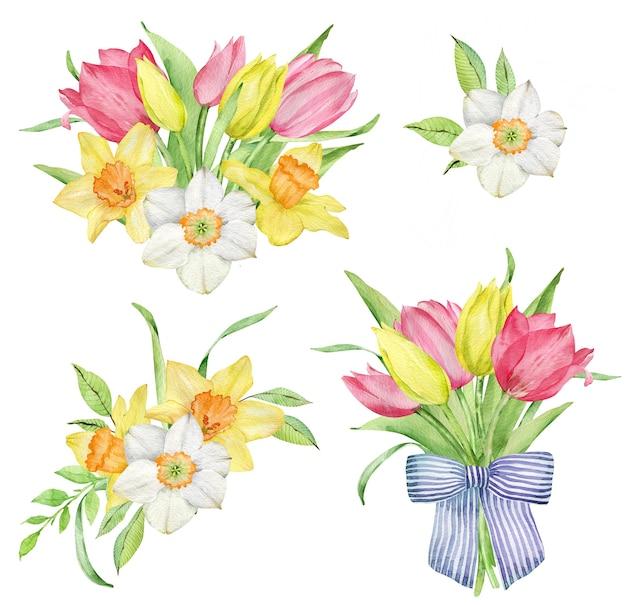 Akwarela clipart różowych i żółtych tulipanów i żonkili. wielkanocny zestaw kompozycji kwiatowych na białym tle