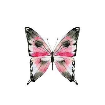 Akwarela czarno-różowy motyl