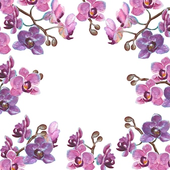 Akwarela gałęzie orchidei na białym tle na białej powierzchni