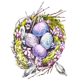 Akwarela gniazdo z ptasimi jajami. ręcznie rysować ilustracje akwareli na białym tle. kolekcja wielkanocna.