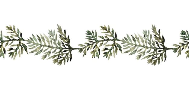 Akwarela graniczy ze stylizowaną rośliną piołunu