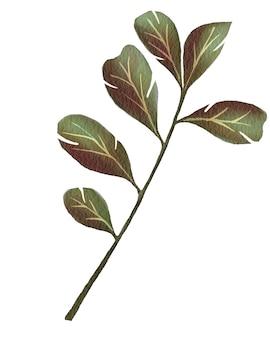 Akwarela ilustracja kwiatowa z tropikalnymi zielonymi liśćmi do użytku projektantów w kartach i innych materiałach drukowanych