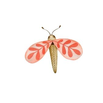 Akwarela ilustracja motyla w stylu boho na białym tle