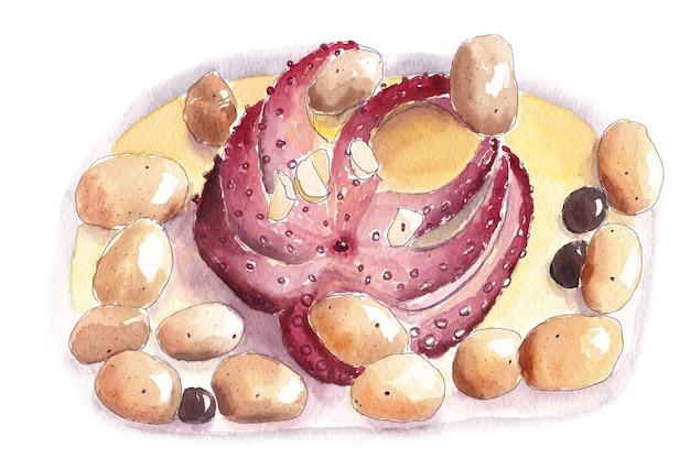 Akwarela ilustracja ośmiornica z ziemniakami i oliwkami
