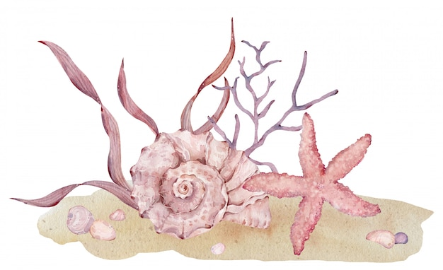 Akwarela ilustracja podwodne muszle, rozgwiazdy i wodorosty na piasku.