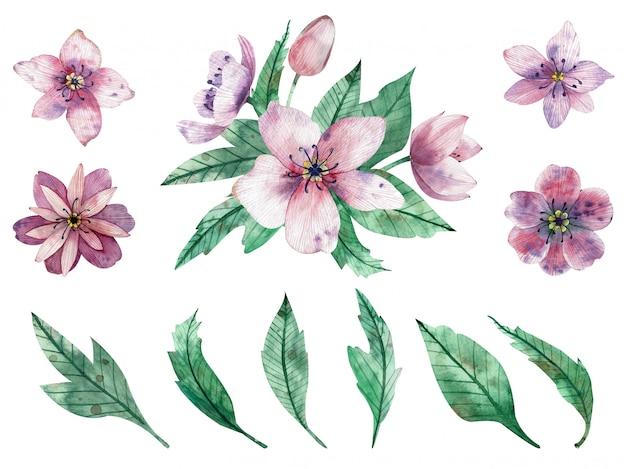 Akwarela ilustracja różowe kompozycje kwiatowe i elementy