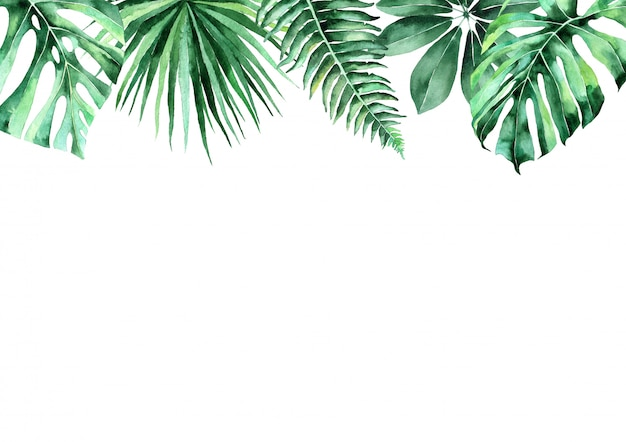 Akwarela ilustracja tropikalnych liści. rama tropikalnych liści. zaproszenie na wesele